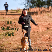 Little Mulberry November 2016